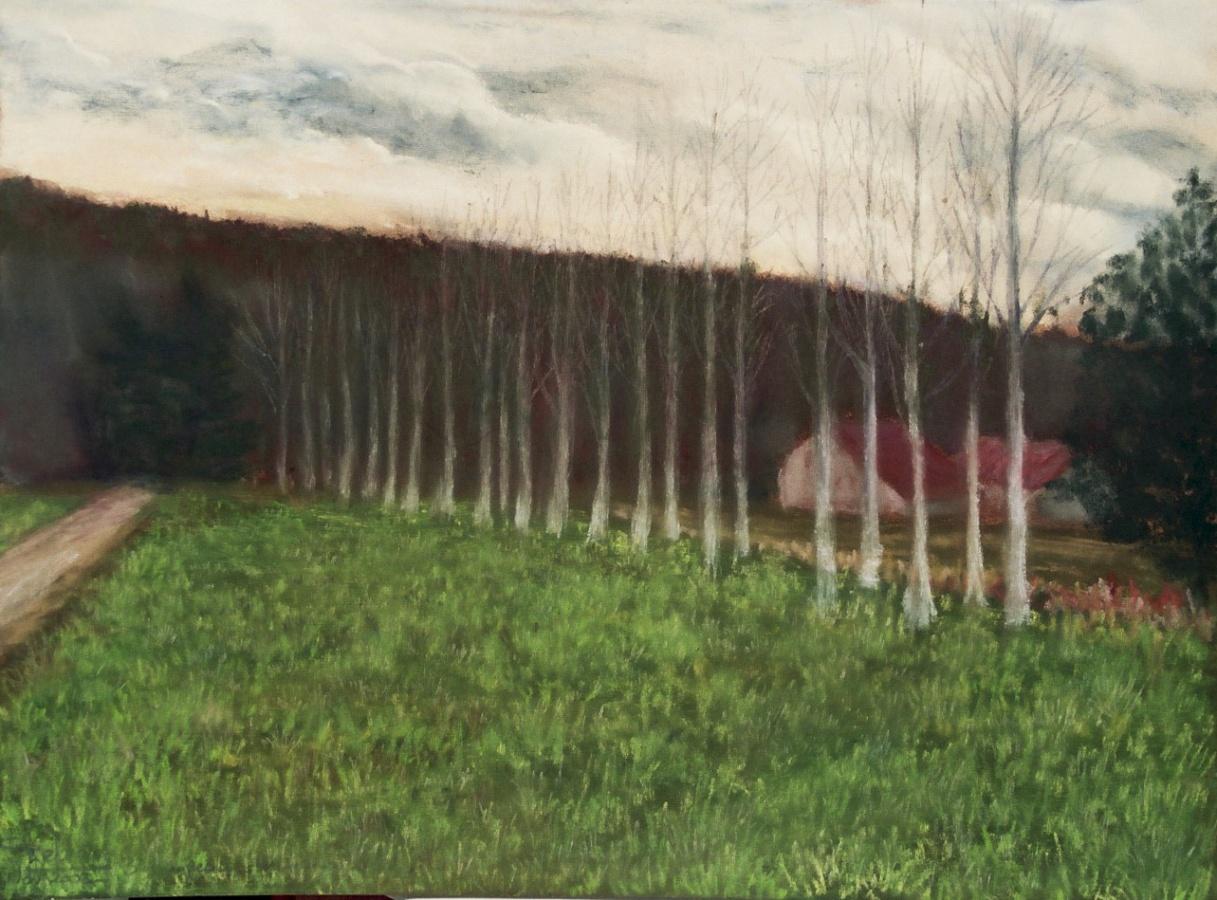 2003 Les maisons blotties