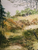 2000 Le chemin des myrtilles
