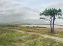 2002 Il a plu sur l'étang