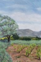 2002 La vigne mauve