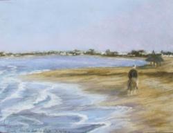 2009 Djerba, matin sur la plage