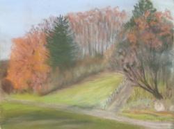 2009 Novembre flamboyant