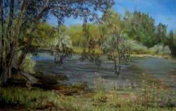 2012 Balsamines au bord du Doubs