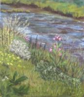 2014 Saule, orties et fleurs sauvages